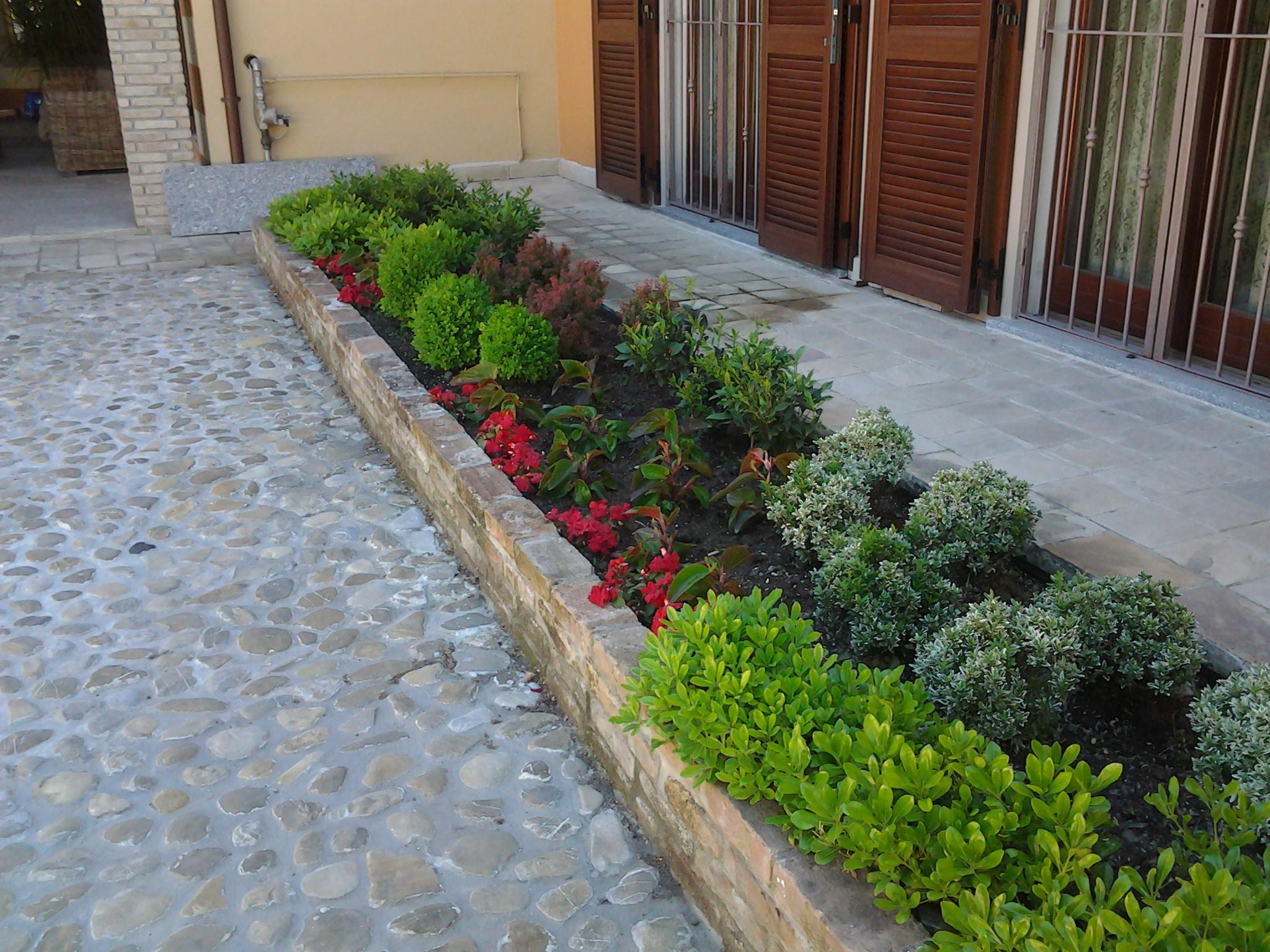 Giardino padronale noscardi vivai e giardini voghera for Catalogo alberi da giardino